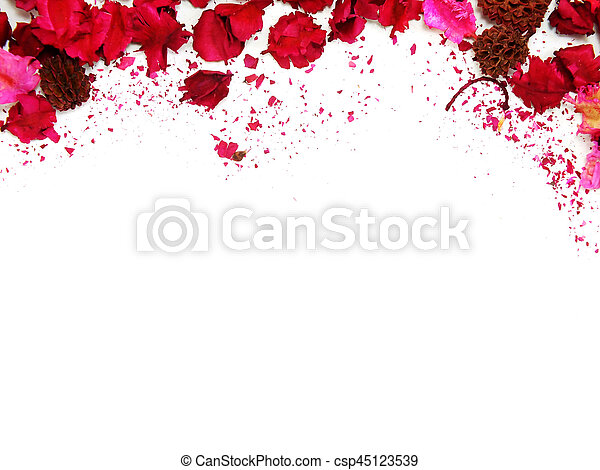 Pink flowers border frame with white background pink flowers border frame with white background csp45123539 mightylinksfo
