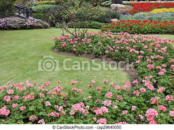 pink flowers in green grass garden - csp29640050