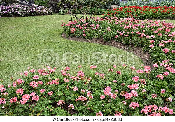 pink flowers in green grass garden - csp24723036
