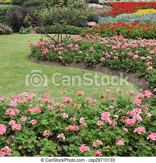 pink flowers in green grass garden - csp29710133