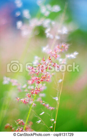 Pink flowers in spring background - csp9131729