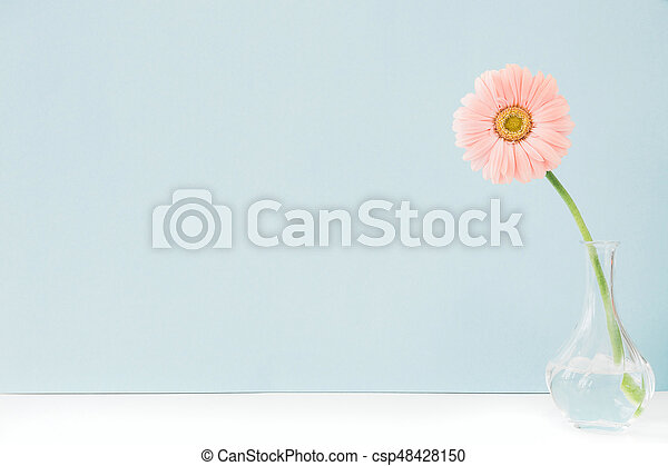 Pink Flowers In Vase On Table On Blue Background Space For Text