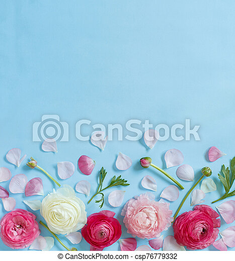 Pink flowers on a light blue background - csp76779332