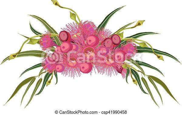 Pink gumtree flower arrangement pink flowering gum bouquet pink gumtree flower arrangement csp41990458 mightylinksfo