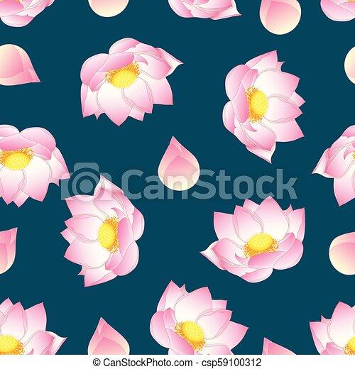 Pink Indian Lotus On Green Teal Background Nelumbo Nuciferasacred