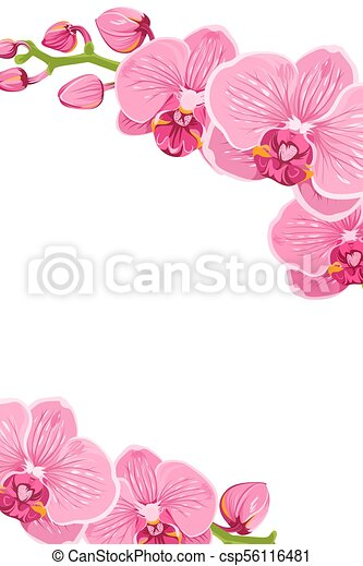 pink orchid flowers border frame template card pink purple bright