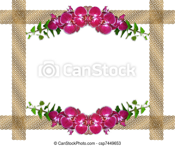 pink orchids ivy border image and illustration composition design