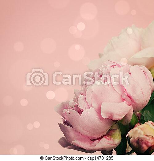 Pink peonies on pastel background - csp14701285