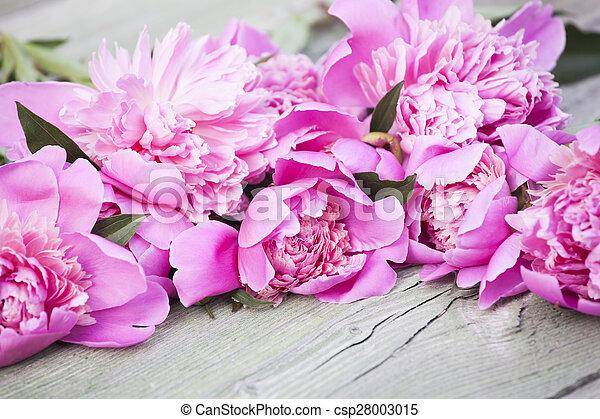 Pink peonies on wooden background - csp28003015