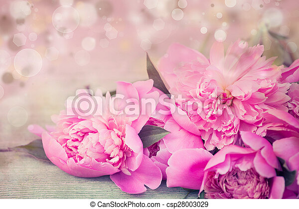 Pink peonies on wooden background - csp28003029