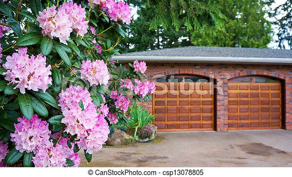 Pink rhododendron, shrub with double wooden garage door. - csp13078805