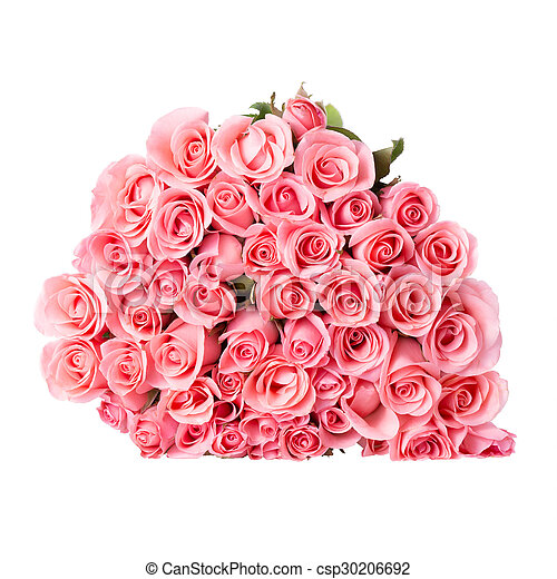 Pink rose flower bouquet on white background pink rose flower bouquet on white background csp30206692 mightylinksfo