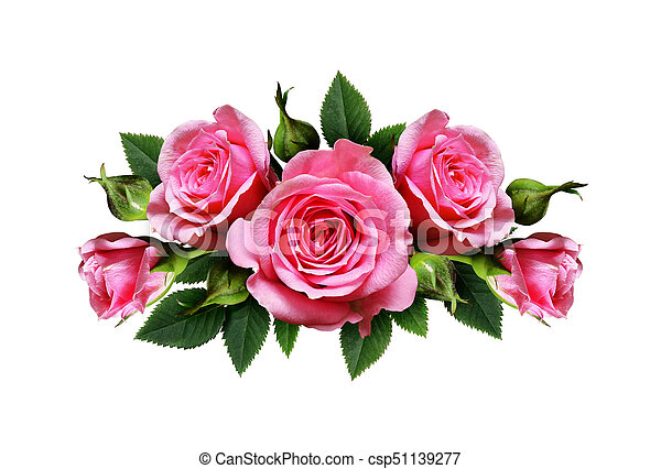 Pink rose flowers arrangement isolated on white pink rose flowers arrangement csp51139277 mightylinksfo