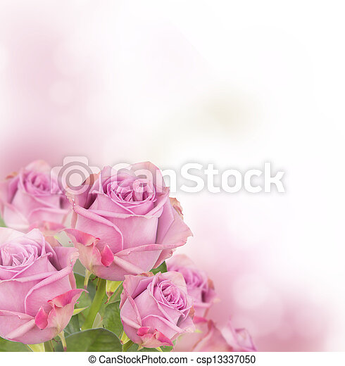 Pink roses bouquet with free space for text - csp13337050