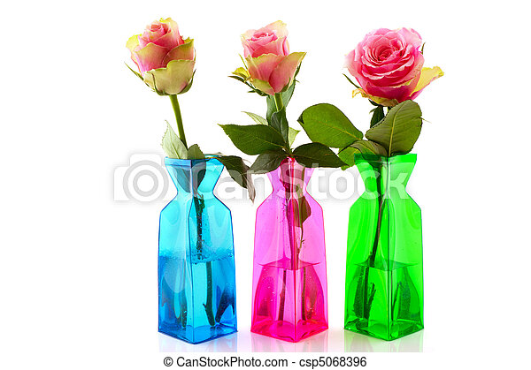 Pink Roses In Colorful Vases Beautiful Pink Roses In Colorful