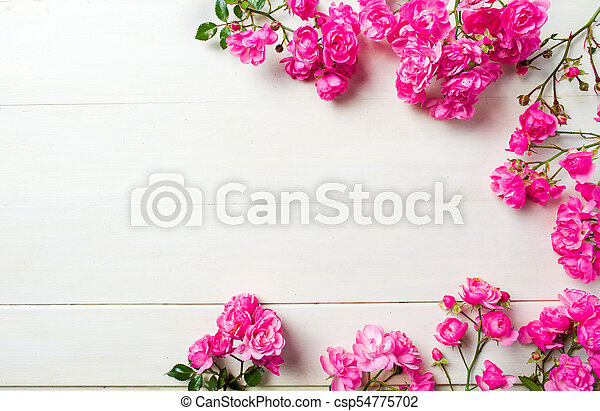 Pink roses on wooden background top view - csp54775702
