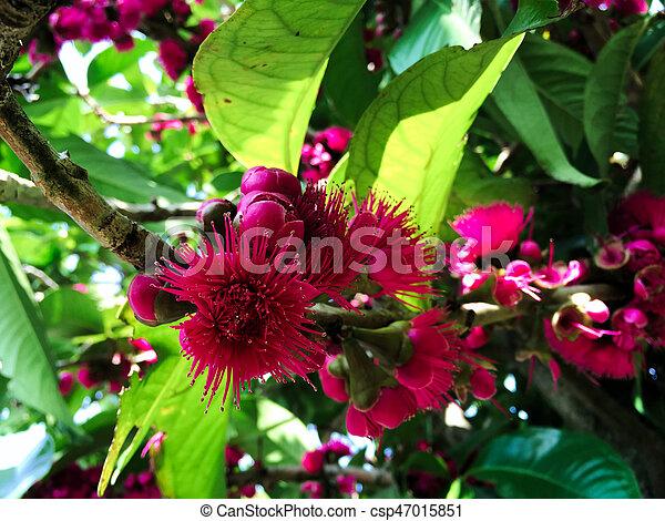 pink satin-ashes - csp47015851