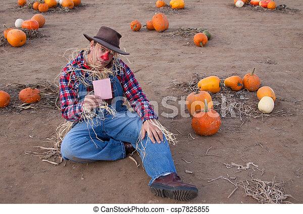 pink slip in pumpkin patch - csp7825855