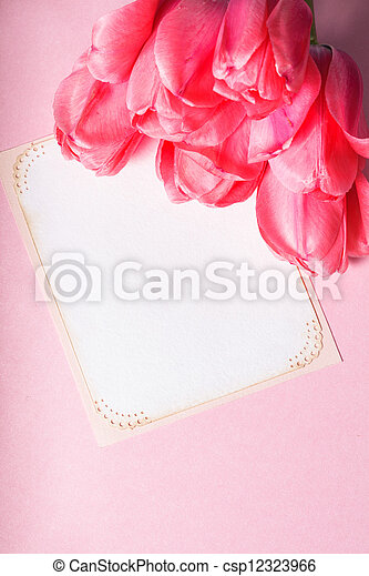 Pink tulips and card - csp12323966