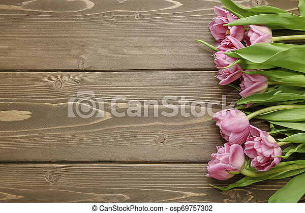 Pink tulips on wooden background - csp69757302