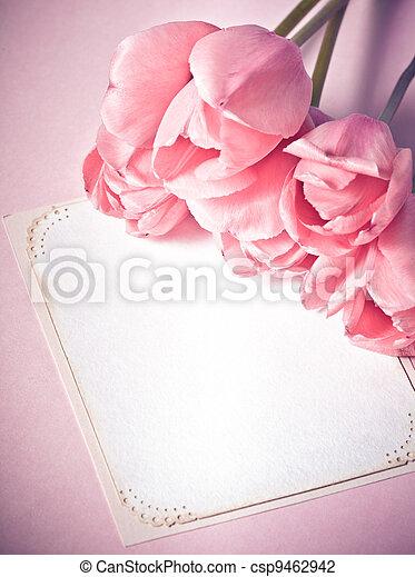Pink tulips - csp9462942
