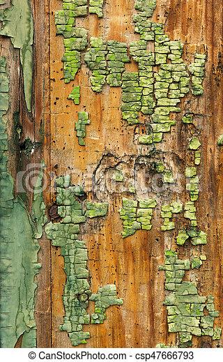 pintado, madeira, antigas, textura - csp47666793