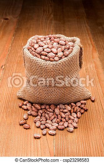 Pinto beans in burlap bag - csp23298583