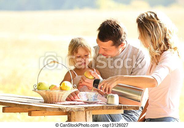 piquenique, família - csp13126027