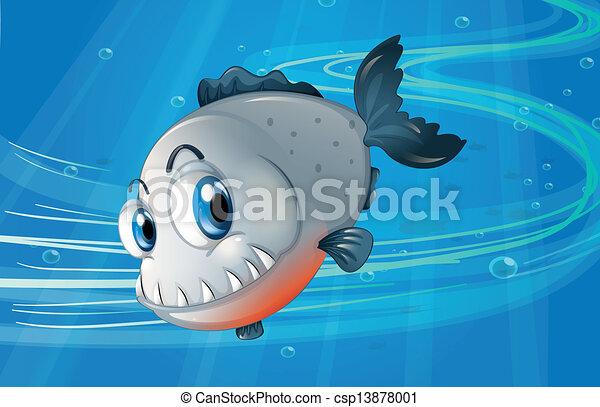piranha, mare, sotto - csp13878001
