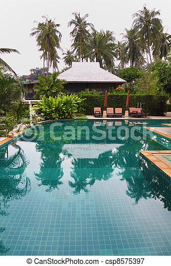 piscina, natação, bonito - csp8575397
