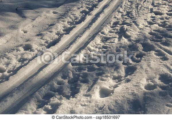 pista, esqui, luz solar - csp18501697