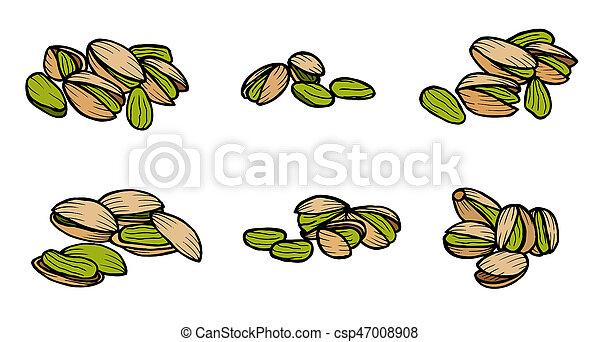 pistachio nuts and kernels. - csp47008908