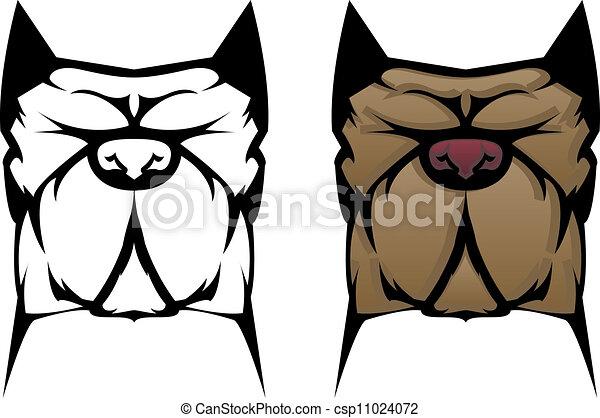 Pit Bull Dog - csp11024072