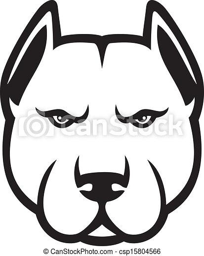 pit bull head (pit bull terrier) - csp15804566