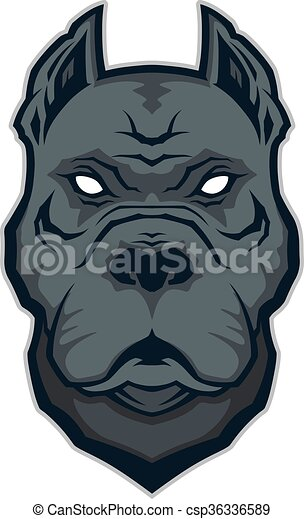 Pitbull head mascot - csp36336589