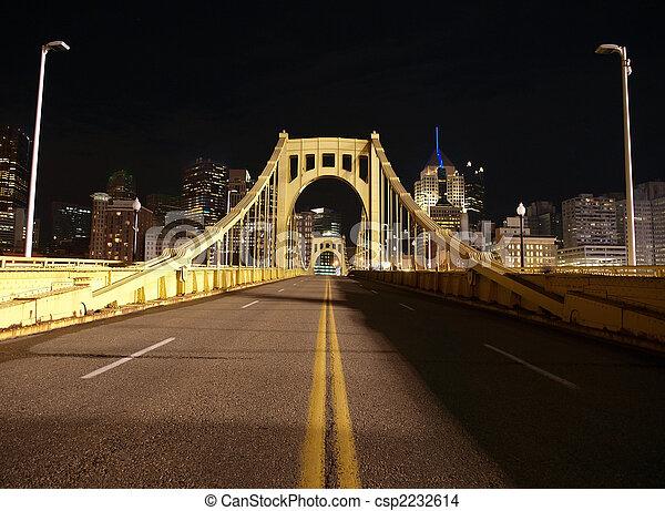 Pittsburgh Night Bridge - csp2232614