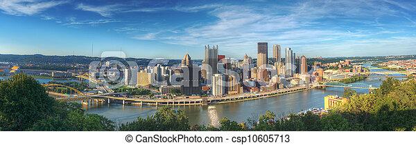Pittsburgh Panorama - csp10605713