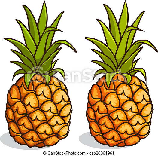 pi u00f1as  aislado  ilustraci u00f3n  vector  plano de fondo  blanco fruit clip art for coloring fruit clip art pictures