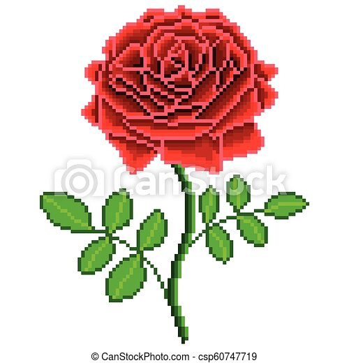 Pixel Red Rose Flower Detailed Isolated Vector