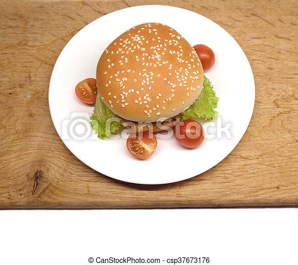 Comida rápida en el plato blanco - csp37673176