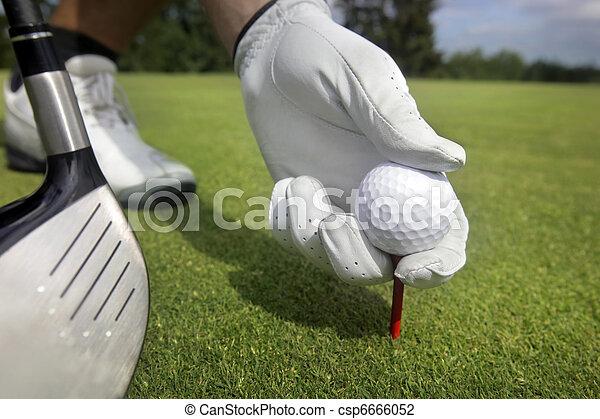 Placing golf ball on a tee - csp6666052