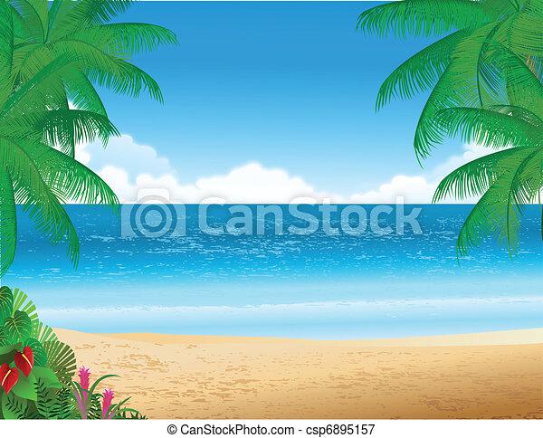 plage tropicale - csp6895157