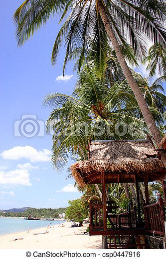 plage tropicale, scène - csp0447916