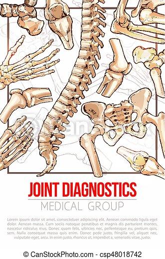 Knochen- & Gelenkerkrankungen