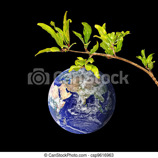 Planet Earth as a fruit on branch - csp9616963