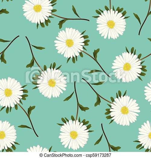 Astro blanco, margarita en verde fondo verde azulado - csp59173287