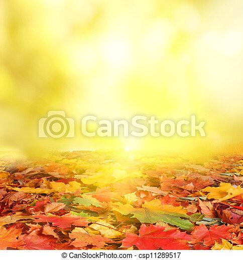 Un fondo de otoño - csp11289517