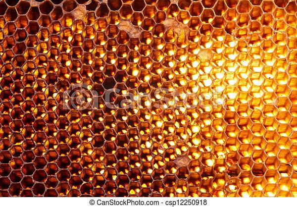 Trasfondo de Honeycomb - csp12250918