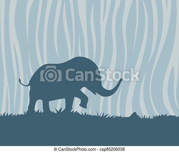 plano de fondo, safari, pequeño, elefante - csp85206038