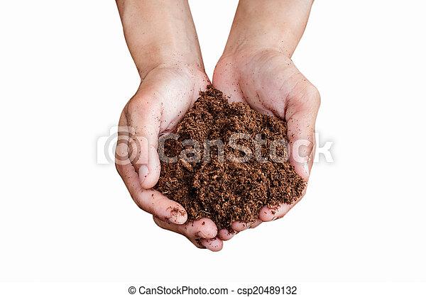 Soil paet moss on hand aislado fondo blanco - csp20489132